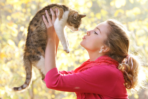 A cat is the perfect pet for a family as they encourage responsibility and teach compassion.