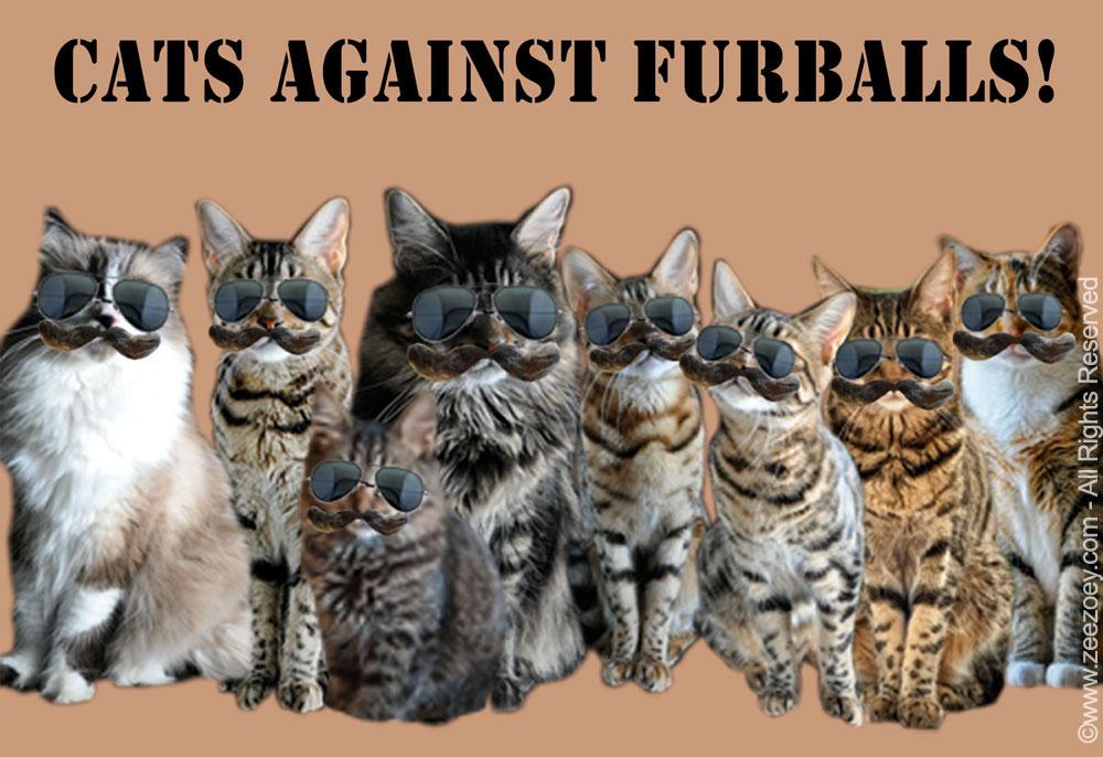 furball-cats