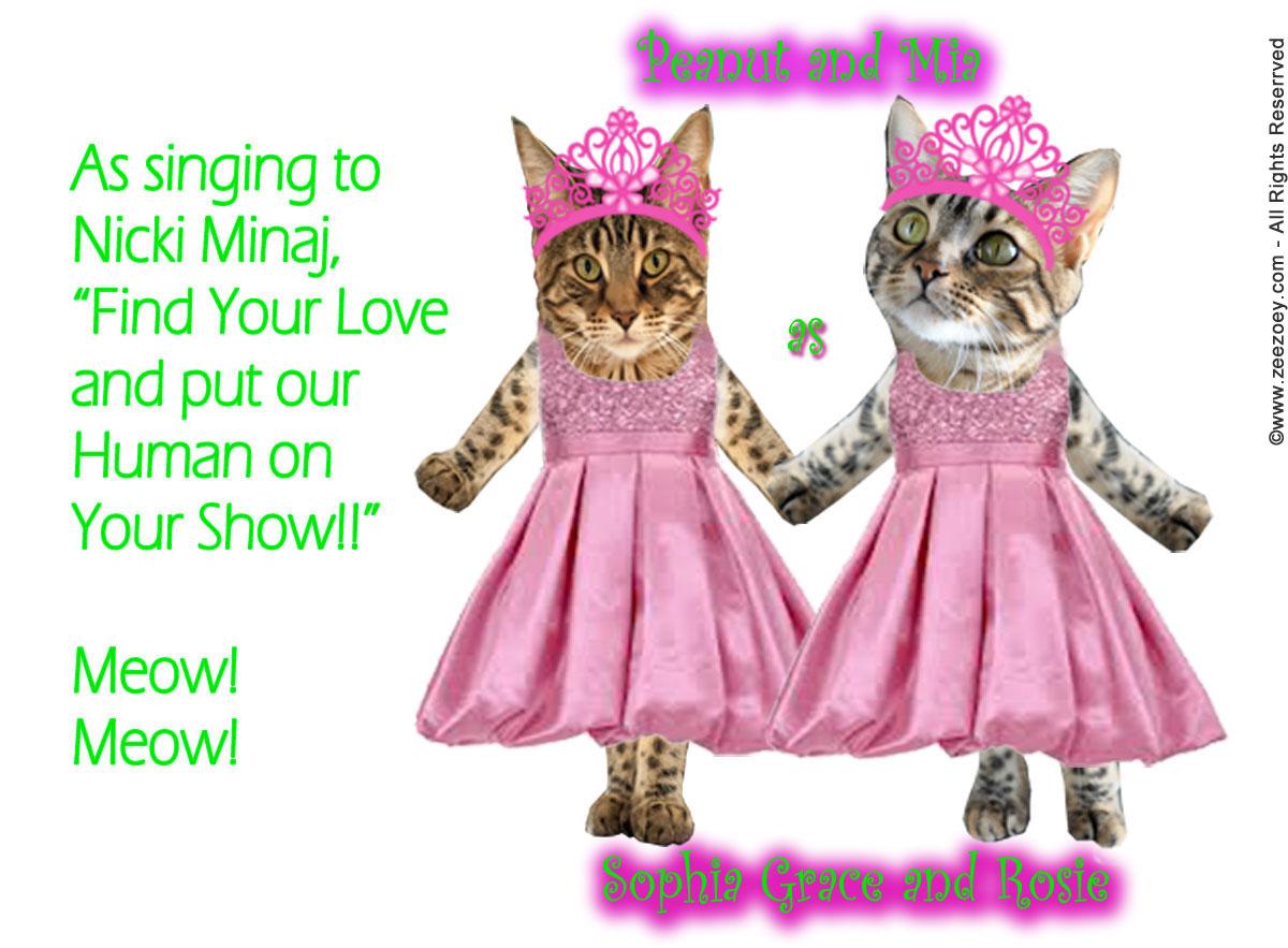 Singing-cats-for-Ellen