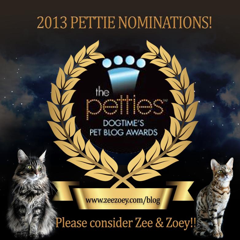 pettie-template