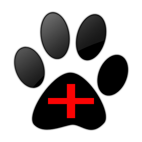 large black paw-safety