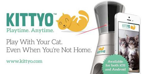 Kittyo2-(2)