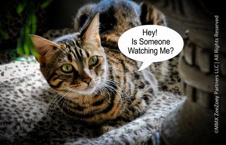 mia-watching