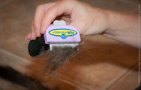 The FURminator gets right to the dander in the hair.