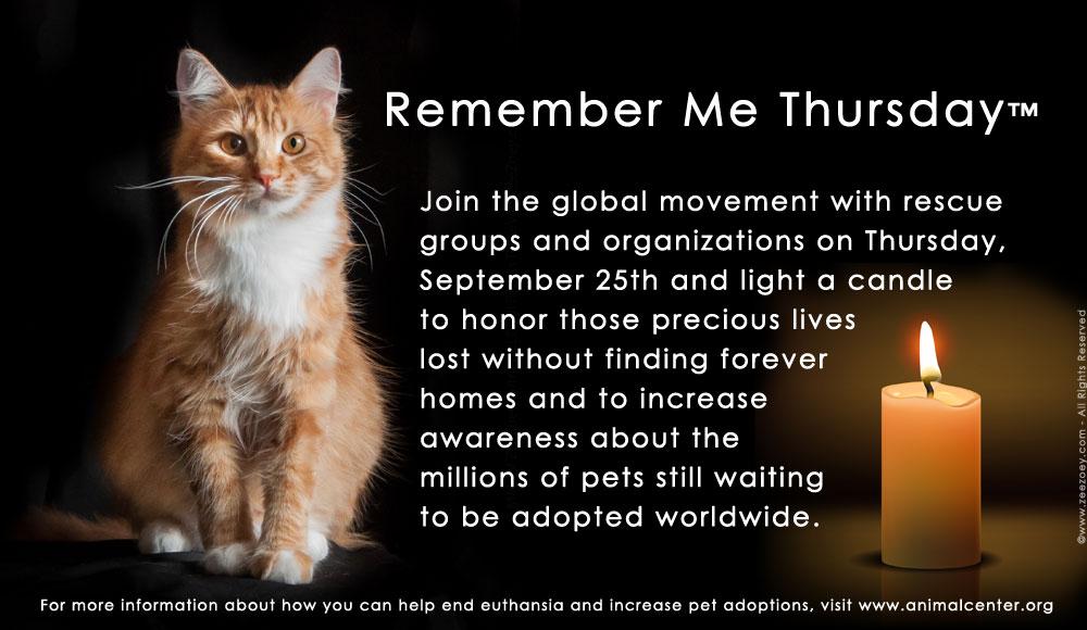 Remember-me-thursday