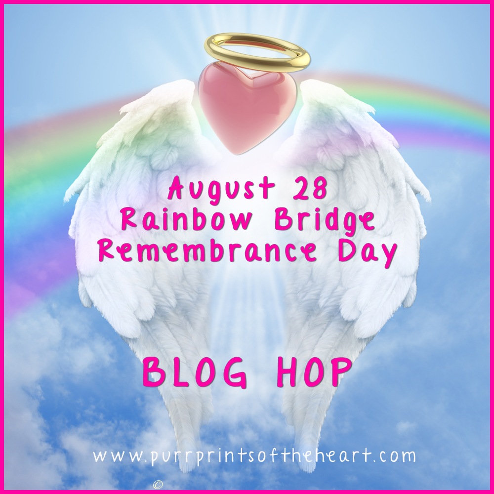 Rainbow Bridge Day-hop