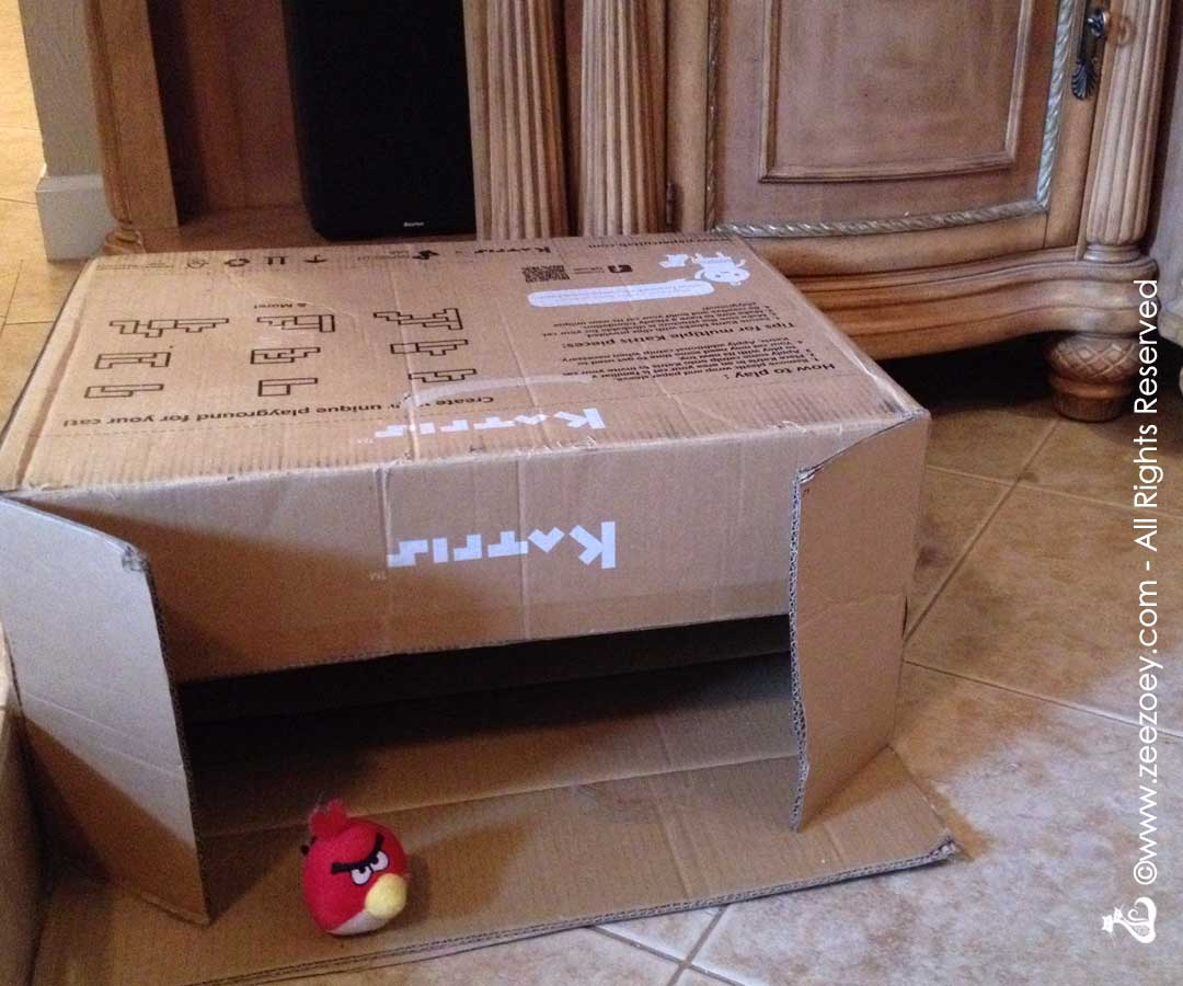 Katris box and Angry Bird