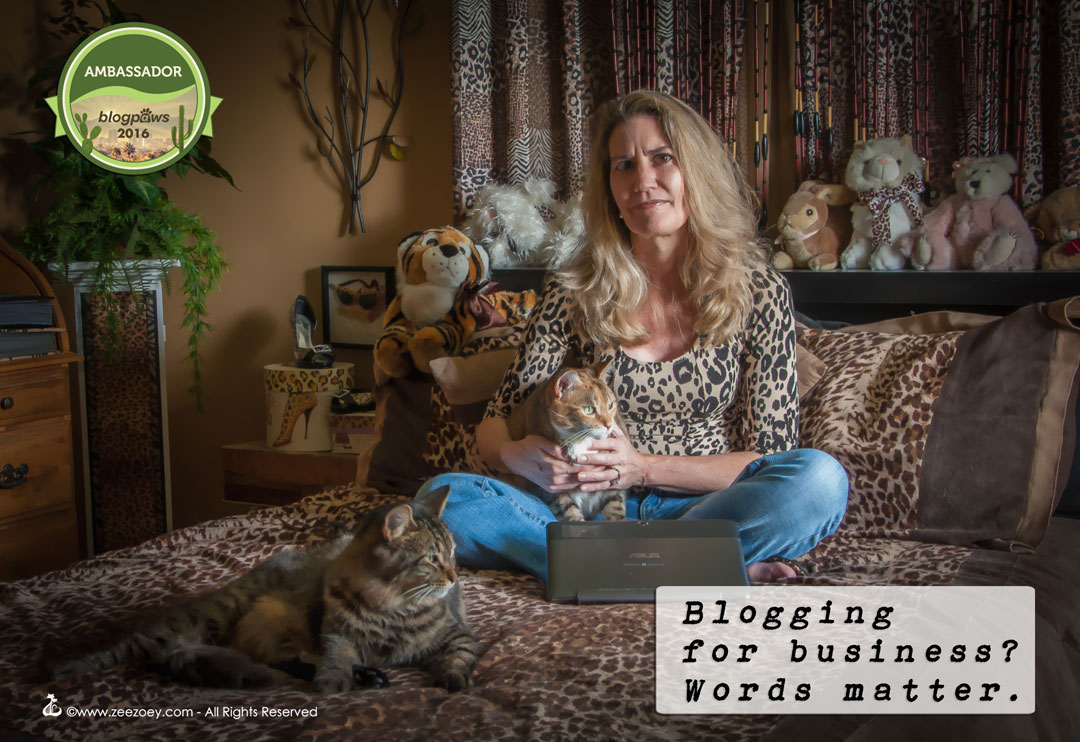When you become a pet blogger, you have to accept the responsiblity you are in the public eye and what you say matters