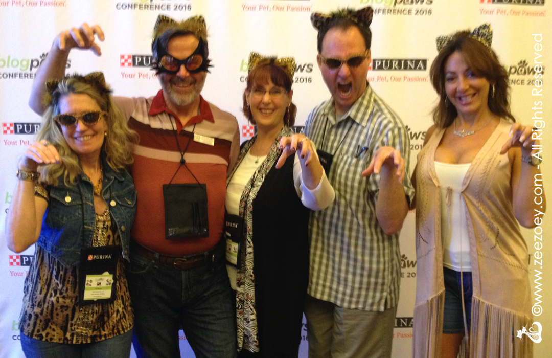 Highlights from the 2016 BlogPaws / Cat Writers' Association Conference in Phoenix, AZ at the Sheraton Grand Wild Horse Pass Resort and Spa
