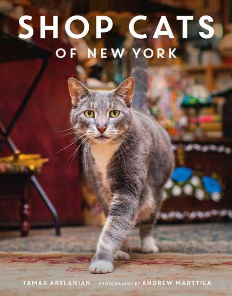 shop-cats-of-new-york-cover