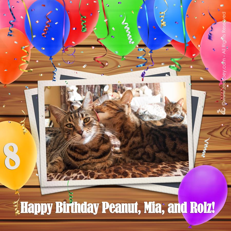 Peanut, Mia, and Rolz